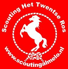 Scouting Almelo Twente